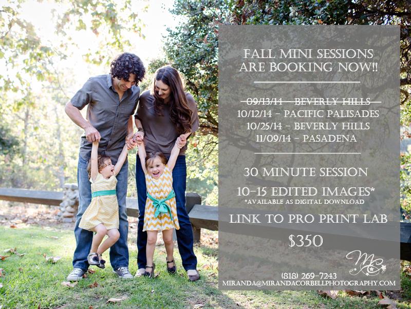 los angeles family photos, mini sessions, los angeles mini sessions